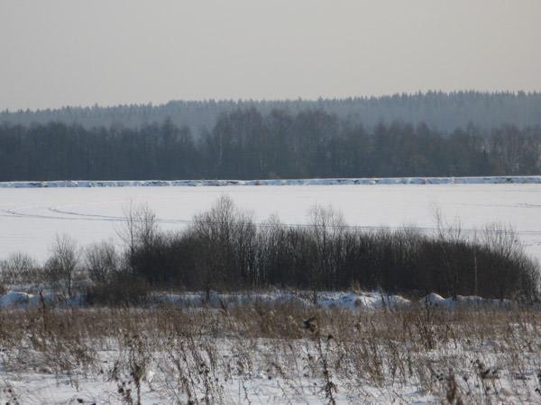 Лесны Дачи / Пруд зимой